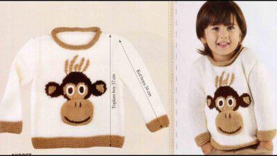 Maymuncuk Modeli İle Çocuk Kazağı